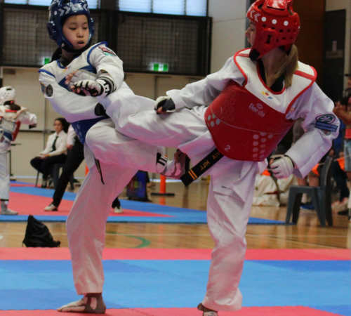 Taekwondo fighting is an exciting Olympic sport for male and female athletes