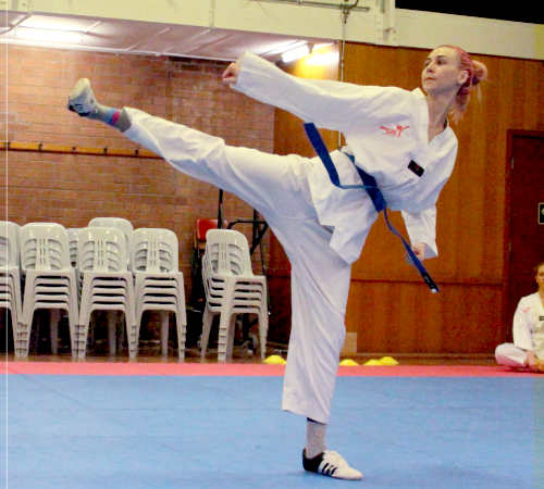 Taekwondo classes are available for adults